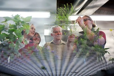 An intensive, two-week course in plant morphology was the first of what will become an annual summer offering in plant organismic biology at Arnold Arboretum.