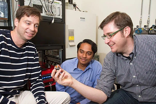 With the help of the zebra finch, Bence Ölveczky (left) and his team of graduate student researchers Farhan Ali (center) and Timothy Otchy found that the brain uses two largely independent neural circuits to learn the temporal and spatial aspects of a motor skill.