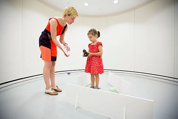 """Previous research has shown that young children and animals use geometric information in similar ways — to navigate environment and to recognize shapes. Harvard graduate student Moira Dillon worked with children of varying ages, including 4-year-old Helga Boros, to investigate her research. """"If they were presented with a room that only had sides, they used the distance information to navigate, and when they were presented with a room that only had corners, they used the angle information they use to recognize shapes."""""""