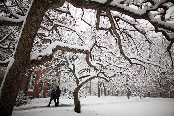 """With slack time in the schedule, the time lost to [weather-related] closure can be regained,"" says Joshua S. Goodman, assistant professor of public policy at HKS."