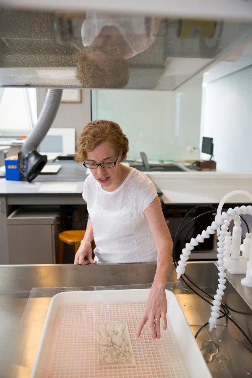 Paper conservator Penley Knipe prepares a work on paper for a bath in the Straus Center's paper lab. Stephanie Mitchell/Harvard Staff Photographer