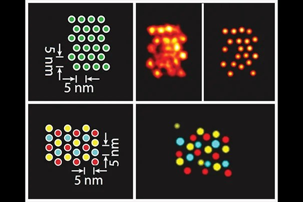 Schematics and DMI-generated super-resolution images of a pattern of individual signals (top) and three different target species within the same structure that have been visualized using Exchange-PAINT-enhanced DMI method.
