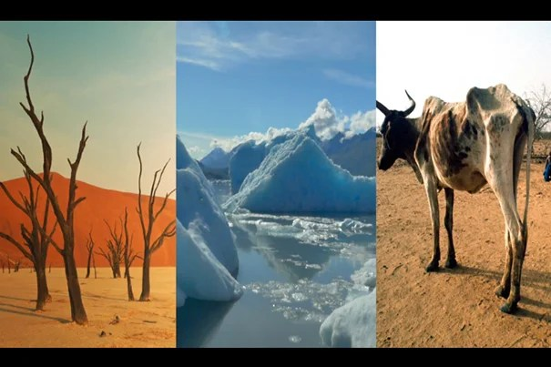The Harvard University Center for the Environment (HUCE) has produced 35 videos in which experts in various fields describe work related to climate change. The videos are paired with additional material that will serve as a resource as the University marks Harvard Climate Week, from April 24-28.