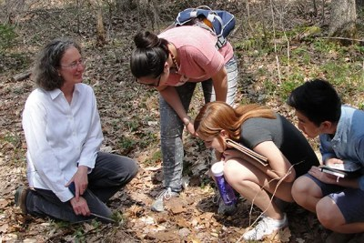 "Seattle Times environmental reporter Lynda Mapes (left) turned her fellowship year at Harvard Forest, during which she focused on a single oak tree, into a book titled ""Witness Tree."""