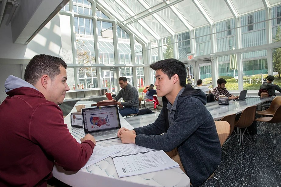 Jordan Silva '21 (left) and Dustin Chiang '19 study election results together. Kris Snibbe/Harvard Staff Photographer