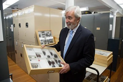 Professor Brian Farrell holds a sampling of David Rockefeller's impressive beetle collection that was recently donated to the Museum of Comparative Zoology by the late alumnus' estate.