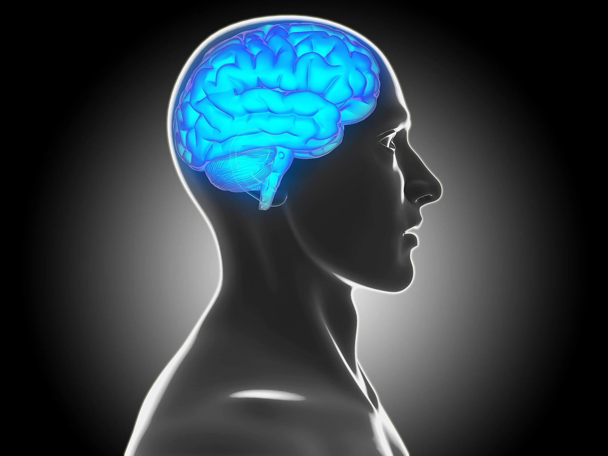 Clues to Slacker Behavior Found in Brain