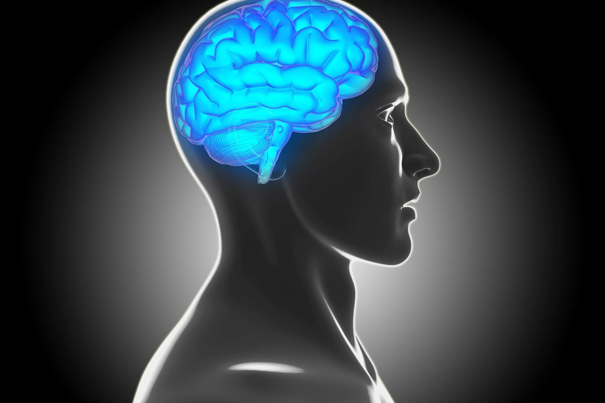 harvard researchers intrigued by possible link between brain lesions