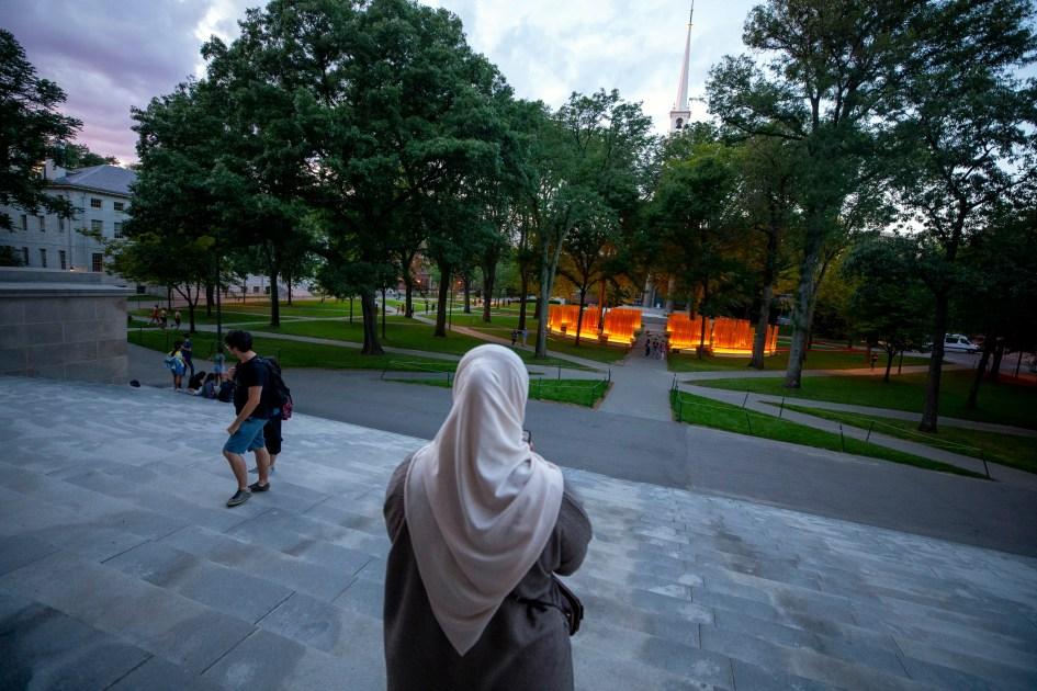 Installation sets Harvard Yard aglow