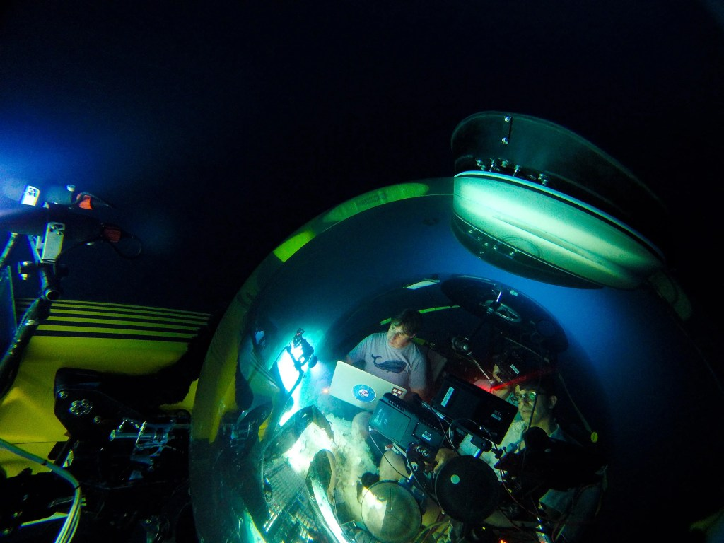 Brennan Phillips (left) and David Gruber pilot a manned research submarine in the deep sea. Their soft robotic arms could one day allow marine biologists to conduct experiments in submarine-based underwater research labs. Credit: Brennan Phillips