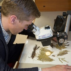 A special journal explains the critical importance of biological collections