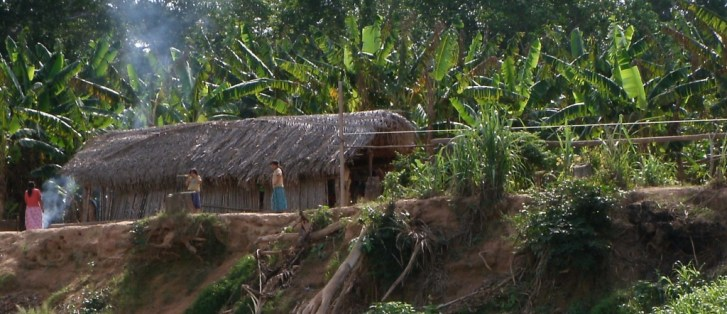 A new study shows the Tsimane people have the lowest reported levels of vascular aging for any population. (Photo by Ben Trumble)