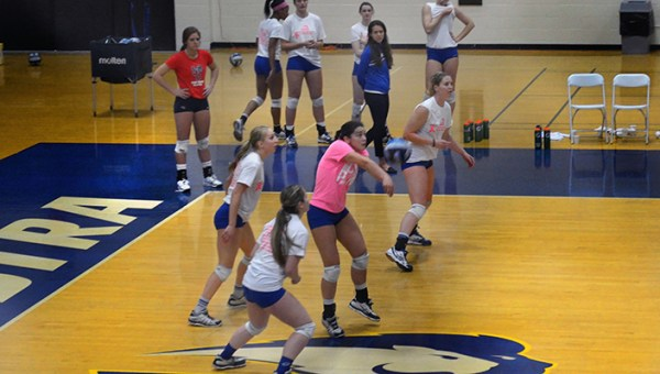 Hofstra Hosts Spike Out Volleyball Tournament; Raises More ...