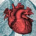 Болезни сердца отнимают жизнь каждые 25 минут