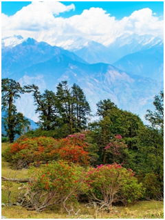 Places to visit in Uttrakhand