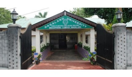 Top colleges in Nagaland