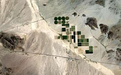 Saudi Farm in US Desert