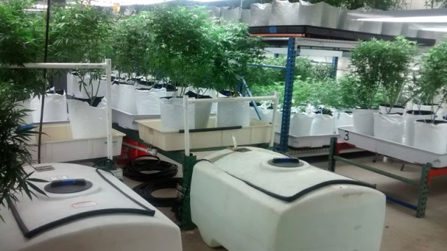 co-harvest-facility
