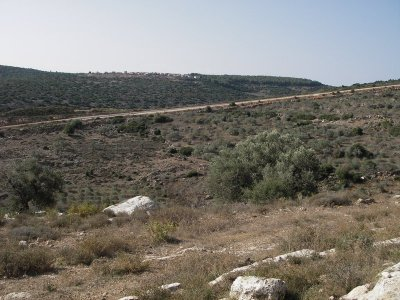 Ahmed-Settlement