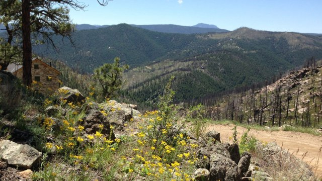 Fourmile Canyon