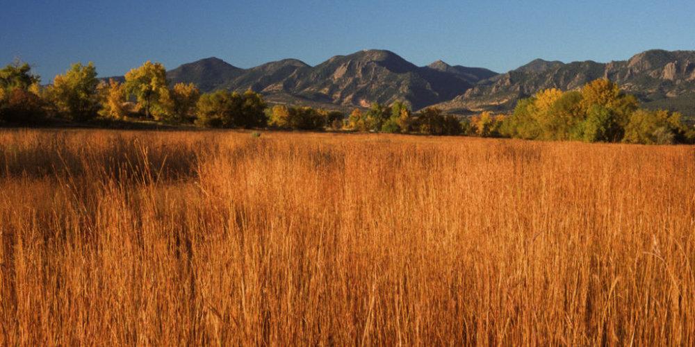 Tallgrass Prairie October