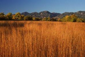 tallgrass-prairie-in-october