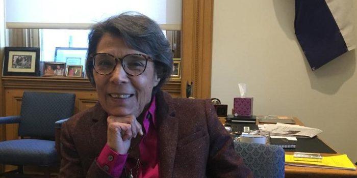 Capitol Coverage: Senate Minority Leader Guzman Talks Election Losses And 2017 Goals