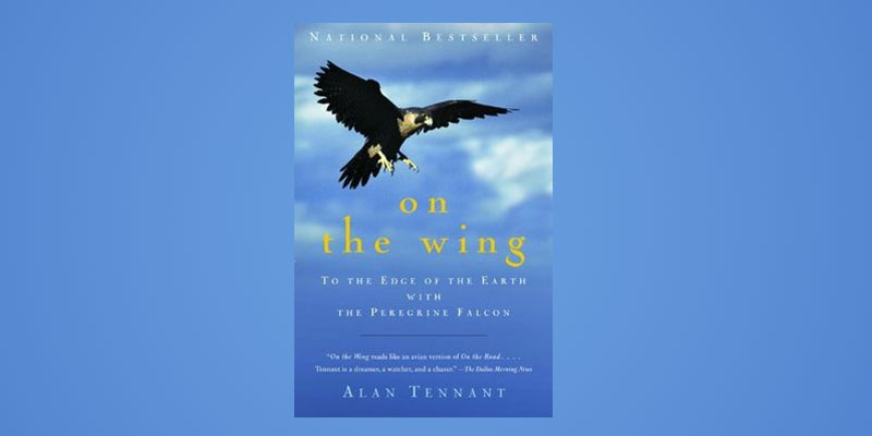 "Booktalk:  Wildlife lecturer Alan Tennant and ""On The Wing: To The Edge Of The Earth With The Peregrine Falcon"""