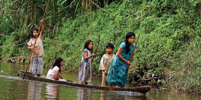 Hemispheres: Development in the Amazon, the Tipnis National Park of Bolivia