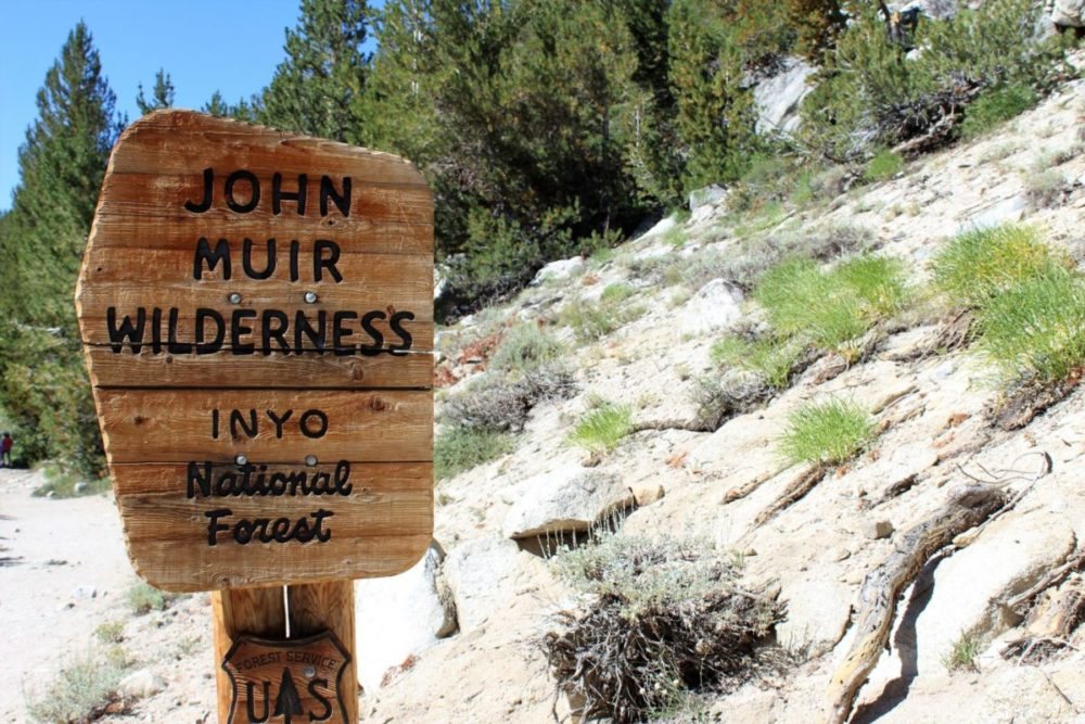 John Muir: The Unruly Mystic