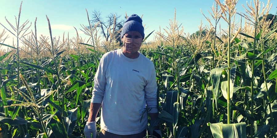 Gleaning-Reducing Food Waste from Farm to Table_KGNU