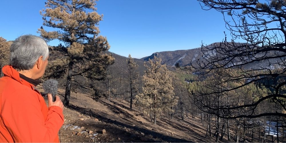 The Calwood Fire burned more than 10,000 acres