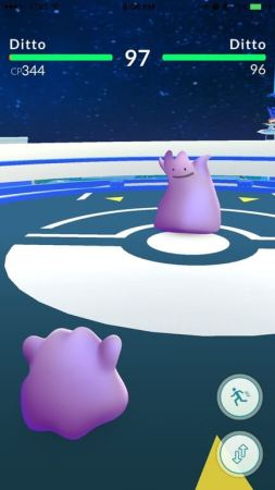 Pokémon Go Ditto gegen Ditto