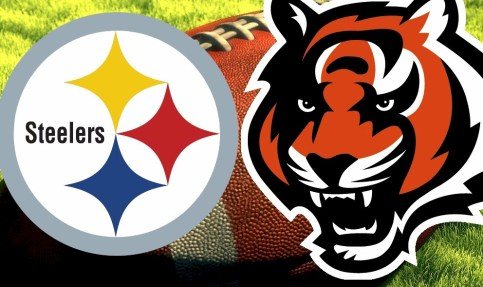 Image result for steelers vs bengals