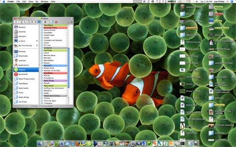 desktop-meme.jpg