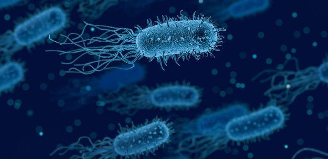 Генетики хотят запрограммировать вирусы, чтобы те ...