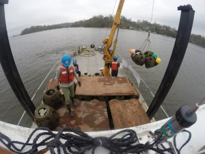 Photo of reef Balls being lowered into position