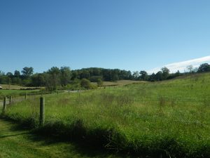 Photo of the Upper Patapsco Rural Legacy Area in Carroll County