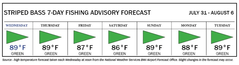 Striped bass fishing advisory chart indicating green, or good, fishing days from Wednesday through Tuesday.
