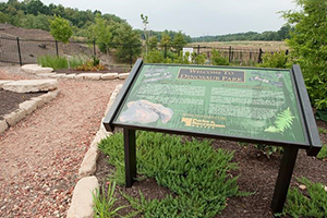 Dinosauer Park in Laurel