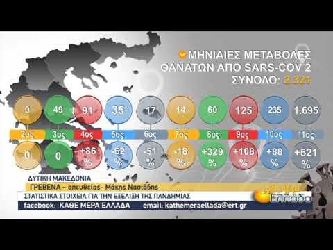 Στατιστικά στοιχεία για την εξέλιξη της πανδημίας στην Ελλάδα | 30/11/2020 | ΕΡΤ