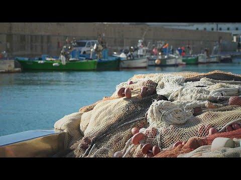 Αδριατική Θάλασσα: Τα εγκαταλελειμμένα δίχτυα και το σοβαρό πρόβλημα μόλυνσης…