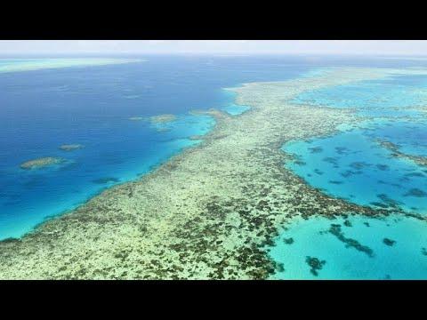 Ο Μεγάλος Κοραλλιογενής Ύφαλος και η Unesco