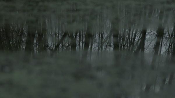 Willie Doherty, Secretion, 2012. HD video still.