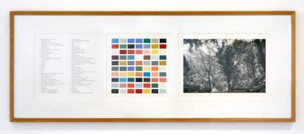 Alison Turnbull, Orto Botanico, 2011. Archival pigment print, gouache and pencil on paper, silver gelatin photograph, 42 x 108 cm. Courtesy of the artist and Breese Little.