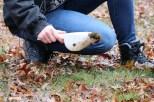 Beth Braun holds a scoop full of soil. (Becky Dernbach/MEDILL)