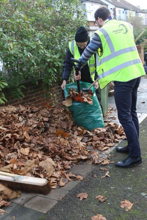 leaf-sweeping-4