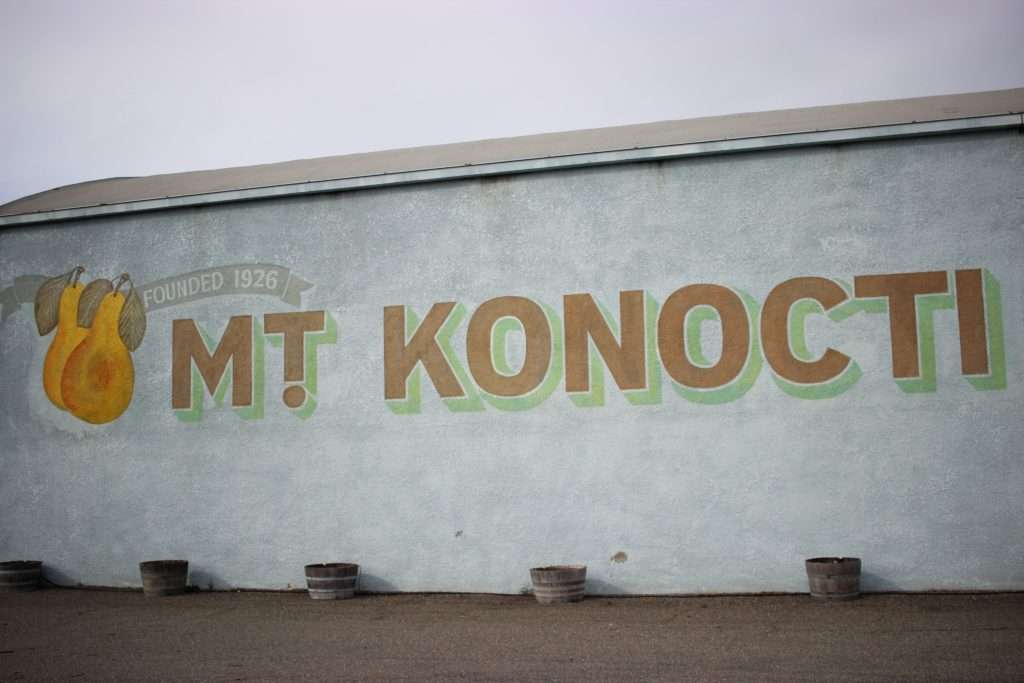 the side of the Mt Konocti growers' cooperative winery building with the name painted in big block lettering