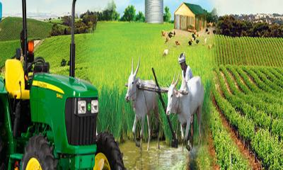 Transformation in Agricultural sector