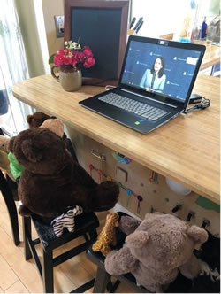 laptop on top of a counter with stuffed animals seated around it